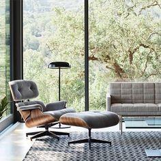 Eames lounge chair 🛋. #pipt