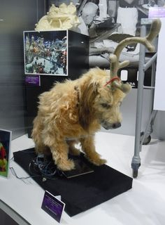 Animatronic dog Max featured in The Grinch