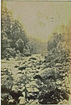 A mountain stream near Eureka, CA 1907