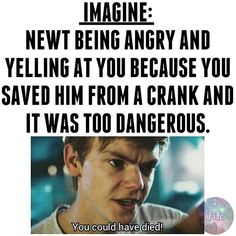 """Newt: """"You could have died! I need you"""" Newt: """"I was so worried about you y/n, if you died it would've been my fault. I love you"""" Y/N: """" I love you too Newt"""" Maze Runner Thomas, Newt Maze Runner, Maze Runner Funny, Maze Runner Movie, Maze Runner Trilogy, Maze Runner Series, Thomas Brodie Sangster, Marvel Dc, The Scorch Trials"""