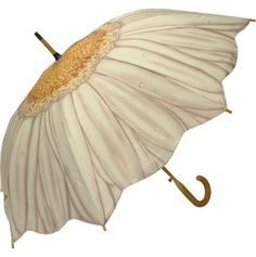 Full Size White Daisy Umbrella for a rainy day