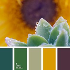 plum color palettes with color ideas for decoration your house, wedding, hair or even nails. Green Color Schemes, Green Colour Palette, Green Colors, Colours, Color Harmony, Color Balance, Balance Design, Palette Violette, Plum Color Palettes