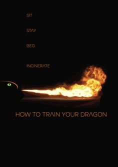 How to Train Your Dragon, one of my favorite movies.