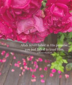Image may contain: flower and plant Islamic Love Quotes, Muslim Quotes, Favorite Quotes, Best Quotes, Nice Quotes, Motivational Thoughts, Inspirational Quotes, Quran Quotes, Hindi Quotes