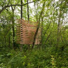 Tree weave by Studio in the Woods movie with Je Ahn of Studio Weave this is hands on #architecture.