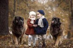 Afbeeldingsresultaat voor children and dogs