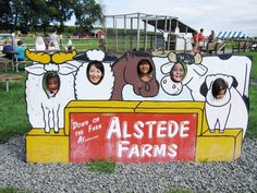 Face-in-the-hole board : Alstede Firm