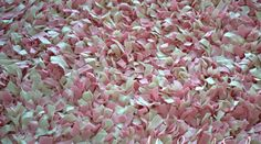 diy shag rag rug tutorial, crafts, flooring, This is how your DIY Shag Rag Rug will look upclose Shag Carpet, Diy Carpet, Diy Projects To Try, Craft Projects, Craft Ideas, Sewing Projects, Decorating Ideas, Sewing Ideas, Decor Ideas
