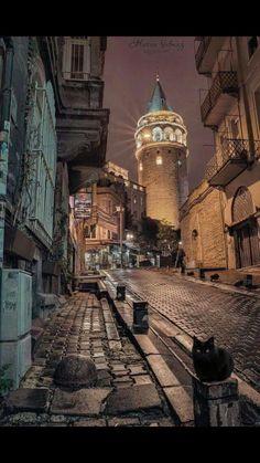 Galata Tower: dinner