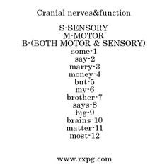 Cranial Nerves Mnemonic for Sensory or Motor College Nursing, Nursing School Tips, Nursing Tips, Nursing Notes, Ob Nursing, Nursing Schools, Surgical Nursing, Surgical Tech, Medical School