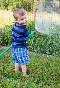 Gardening offers everything a teacher could want when developing curriculum to draw children into their world. As in other fertile curriculum topics, gardening provides opportunities for children to develop socially and emotionally, individually and as a community. The work involved in gardening supports children's physical development, nourishes all their senses, and helps them learn to slow down and observe carefully.