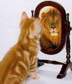 The self-esteem / 'accurate self-assessment' exercise - CBT Dublin Ireland