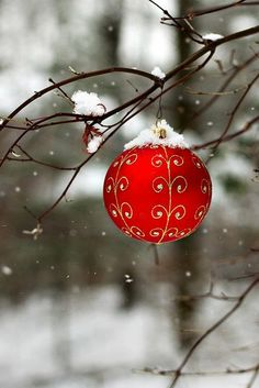 The red Christmas ornament