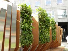 Verde Profilo Vertical Hortus @ Peugeut iOn hortus, Milano #verdeprofilo #vertical #hortus #garden #green #wall #nature #milan #peugeut