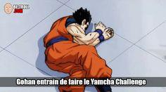 Gohan entrain de faire le Yamcha challenge ! - Be-troll - vidéos humour, actualité insolite