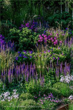Chelsea Flower Show. Image via: - Garden Design - Chelsea Flower Show. Image via: …, - Chelsea Flower Show, The Secret Garden, Purple Garden, Lavender Garden, Lush Garden, Garden Borders, Garden Border Edging, Garden Cottage, Dream Garden