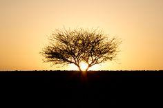 Sunset in the desert, Jordan