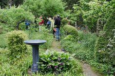 Child-Friendly Garden Design Seattle, WA #Kids #Events