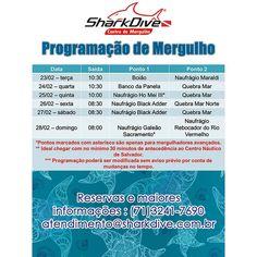 Programação de mergulho da semana! Reservas e maiores informações :  ( 71 ) 3241-7690 atendimento@sharkdive.com.br by sharkdiveoperadora