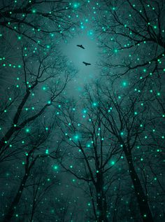 Silently, One by One, the Stars Blossomed (Geometric Stars Remix) Series: A Walk Through the Woods Color: Mint/Aqua/Glow Green Galaxy