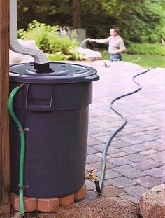 Harness rainwater to water the garden. Outdoor Projects, Home Projects, Water Barrel, Water Collection, Rainwater Harvesting, Water Storage, Save Water, Home Hacks, Backyard Landscaping