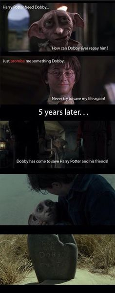 RIP Dobby, you will live in our hearts forever :'(