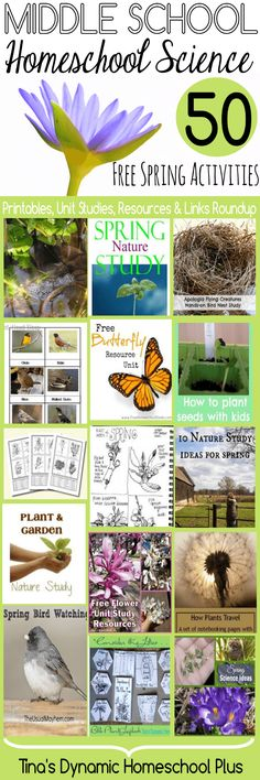 Middle School Homeschool Science 50 Free Spring Activities. Grab some hands-on ideas and printablesfor middle school homeschoolers to study about Spring. http://www.tinasdynamichomeschoolplus.com/2015/02/18/middle-school-homeschool-science-50-free-spring-activities/#_a5y_p=3377962