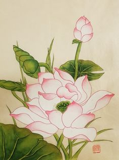 연화도(완성) : 네이버 블로그 Watercolor Lotus, Lotus Painting, Watercolor Artwork, China Painting, Fabric Painting, Watercolor Flowers, Chinese Flowers, Japanese Flowers, Lotus Flower Art
