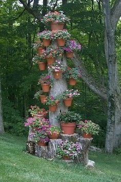 Tree trunk and planters
