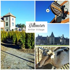 Antler Hill Village on Biltmore Estate is a charming village for family travel. Read our tips for visiting Antler Hill Village. Ashville Nc, Biltmore Estate, Family Traditions, Southern Living, Asheville, Antlers, Family Travel, Places To See, North Carolina