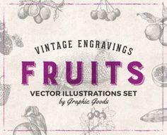 84 Fruits Vintage Engravings - Design Cuts Design Cuts