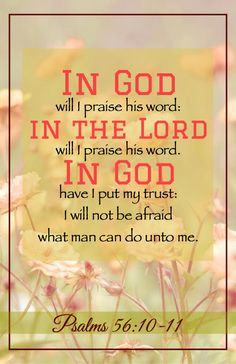 Psalm 56:10-11-I will praise the Word of God, in which I put my trust! I will not fear what man can do to me! (I Will in Psalms)