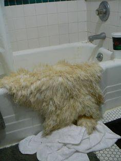 Natural Sheepskin Rug Chemical Free