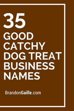 35 Good Catchy Dog Treat Business Names