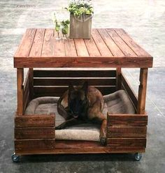 Dog Houses Made With Upcycled Wood Pallets