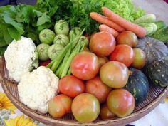 Congelamento de verduras e legumes | Testado Pela Mamãe