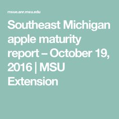 Apple harvest will be wrapping up in seven to 10 days for most east Michigan growers, who will be finishing a number of varieties this week, including Fuji, Northern Spy, Crispin and Idared. Apple Harvest, October 19, Maturity, Michigan, Fruit, The Fruit