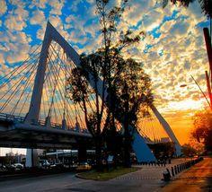 Puente Matute Remos, Guadalajara, Jalisco