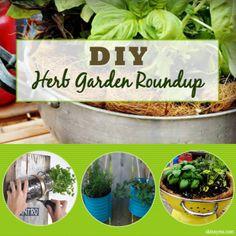 DIY Herb Garden Roundup