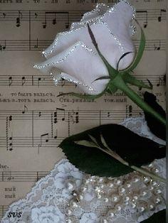 A Vida Como Notas Musicais!!