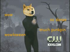 funny dancing halloween doge animal halloween halloween animals shibes trending #GIF on #Giphy via #IFTTT http://gph.is/2f0D3d9
