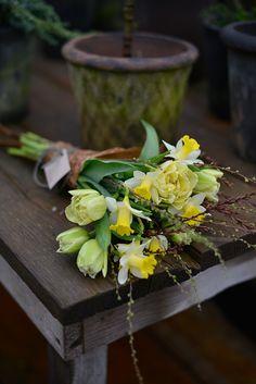 Diy Flowers, Spring Flowers, Beautiful Flowers, Small Flower Arrangements, Bouquet, Garden Bulbs, Spring Sign, Flower Quotes, Ikebana