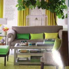 Great color scheme - grey and yellow PLUS kelly green.  Looks very fresh.