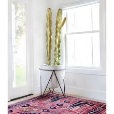 #clientfreakinfabulous #sunday #mywestelm - This was posted on West Elm site -- looks larger than planter now available.