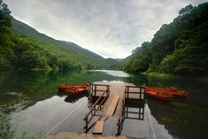 Biogradska Lake, Montenegro