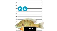 You searched for tatort Fish, Foods
