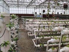 湖北大冶龙凤山旅游观光现代农业园-快乐农场设计建造