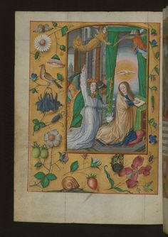 Aussem Hours, Annunciation, with flowers and insects in margins, Walters Manuscript W.437, fol. 19v  This early sixteenth-century book of hours was made for the Aussem family in Cologne, Germany