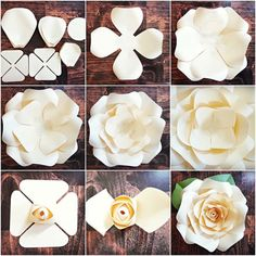 DIY Giant Rose Templates, Paper Rose Patterns & Tutorials, Paper Rose Flower Wall, SVG Cut files for Paper Flowers Discover thousands of images about Full rose paper flower template sets. Fun and easy to make! Step by step Regina rose tutorial. Giant Paper Flowers, Diy Flowers, Fabric Flowers, Paper Flowers How To Make, Paper Flower Wall, Paper Wall Flowers Diy, Paper Flowers Wedding, Paper Flower Centerpieces, Satin Flowers