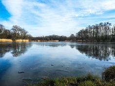 Pond#2